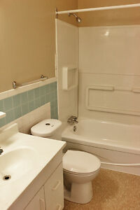 ** Close to Downtown** 2 Bedroom Apartment for Rent in Sarnia Sarnia Sarnia Area image 1