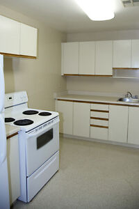Pool, gym, social events: 2 Bedroom Kingston Apartment for Rent Kingston Kingston Area image 1