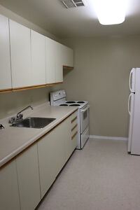 NEED SPACE?  Spacious 2 Bedroom Apartment for Rent in Kingston Kingston Kingston Area image 3
