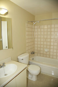 NEED SPACE?  Spacious 2 Bedroom Apartment for Rent in Kingston Kingston Kingston Area image 8
