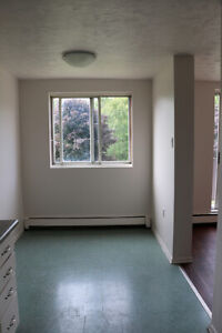 Spacious 3 Bedroom Apartment for Rent by Kelso Beach, Owen Sound