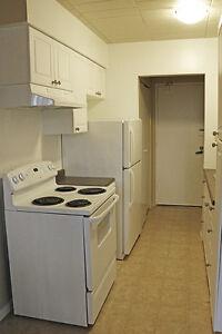 Walk to UWindsor: Sandwich Towne 1 Bedroom Apartment for Rent