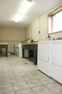 Kingston 2 Bedroom Apartment for Rent close to Memorial Centre Kingston Kingston Area image 5