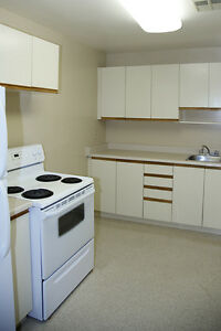 1 Bedroom Apartment for Rent in Kingston at John Counter Place Kingston Kingston Area image 4