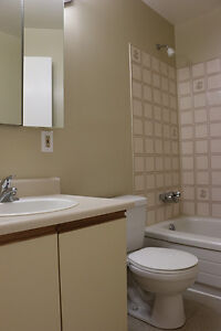 1 Bedroom Apartment for Rent in Kingston at John Counter Place Kingston Kingston Area image 7