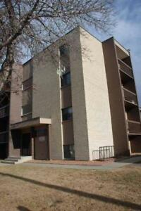 Great DOWNTOWN 1 BR - 1st  Month Free on 12 mth LEASE