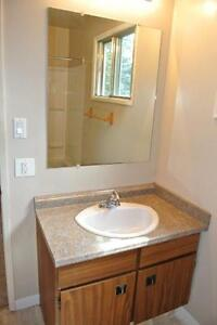 Large Newly Renovated Townhouse in Town of Redwater Edmonton Edmonton Area image 15