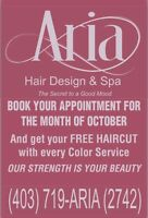 Aria Hair Design in North East (Melody)