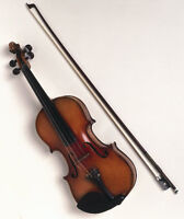 Group Violin Lessons- Peppercreek