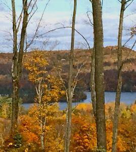 GRAND TERRAIN ZONÉ FERMETTE avec vue sur le Lac Écho (0.31pi2)