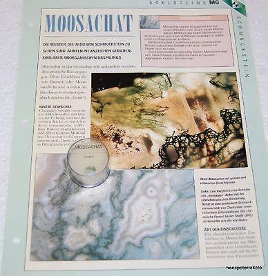Erde Sammlung (Moosachat aus Indien Edelstein Stückchen Mineralien Sammlung Schätze der Erde)