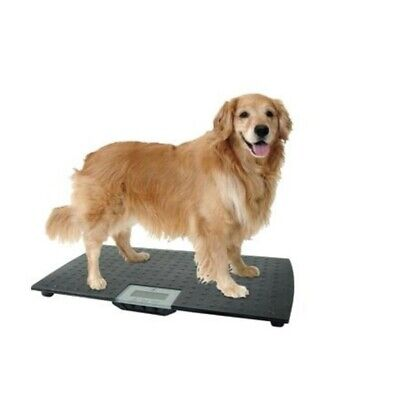 Animal Weight - Digital Pet Scale Large Dog Cat Animal Weight Calculation Veterinary Healthy