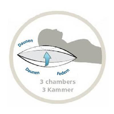 3-Kammer-Kissen Kissen Kopfkissen Daunenkissen Füllung 750g 40x80cm Versandfrei
