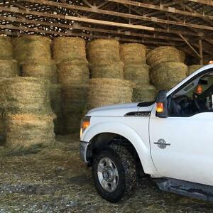 ***BALES OF SWEET QUALITY HAY***