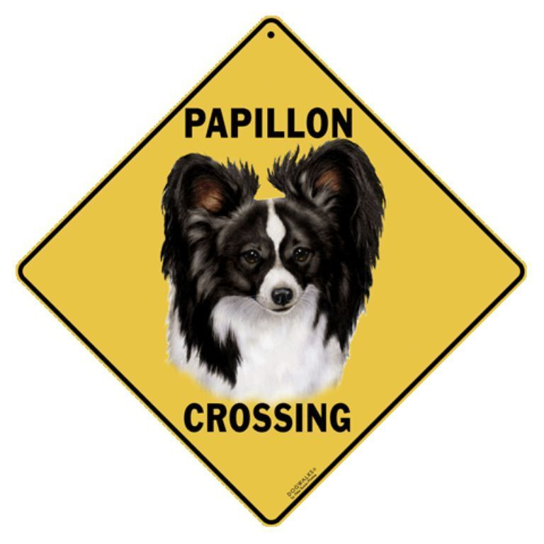 Papillon Crossing Sign NEW 12x12 Metal Dog