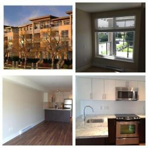 Great central location -New West  1br - for Nov 1st