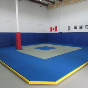Space Available for Martial Arts / Yoga / Fitness Training St. John's Newfoundland image 1