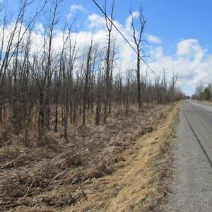 100 Acres of Pristine Land Zoned Rural - Oxford Mills