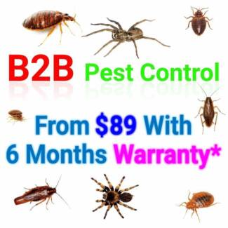 German cockroach Exterminator From-$89 6-months Service* Warranty