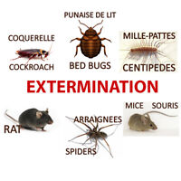 Extermination Montreal and Laval (514) 574-5740
