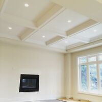 Plaster crown moulding & pre-cast  stone mantels