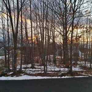 Land For Sale In Beautiful River John