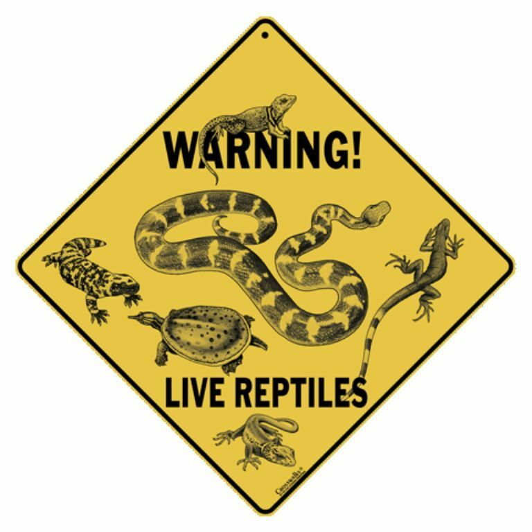 Warning Live Reptiles Sign NEW 12x12 Metal Snake Lizard Turtle