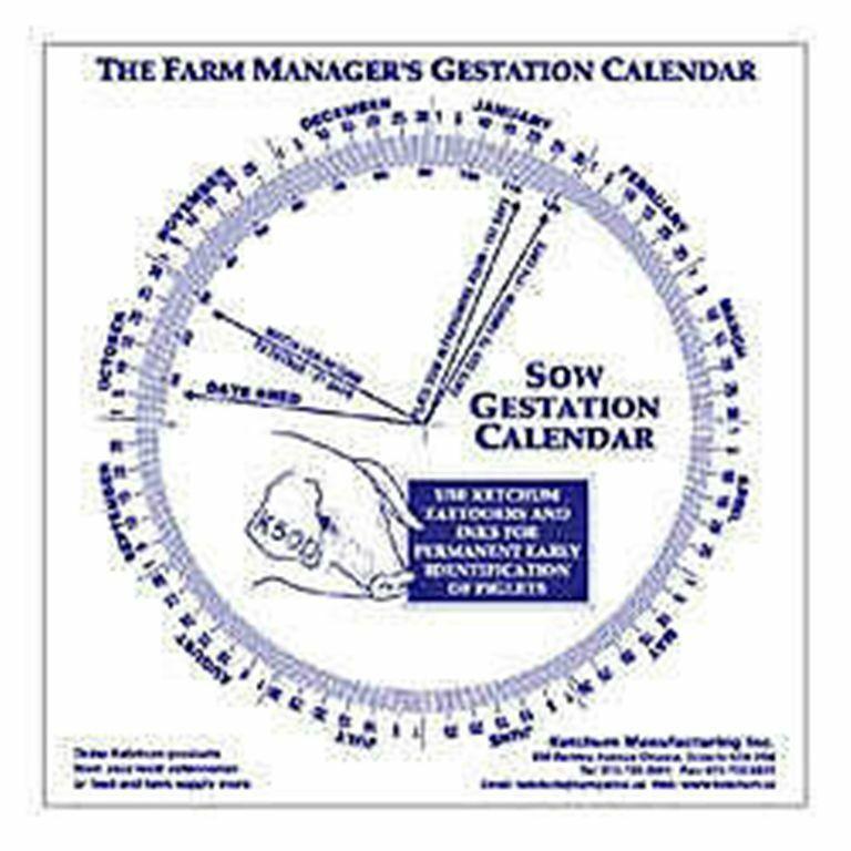 Swine Gestation Calendar Calculate Birth Breeding