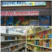 EXOTIC PETS *GRAND OPENING SUPER WEEKEND SALE!!!!!!!!!!!********