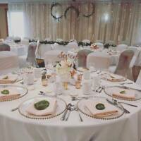 Wedding Rentals - $0.99 Chair Covers