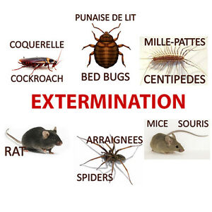 Extermination Montreal and Laval (514) 574-5740 Randy