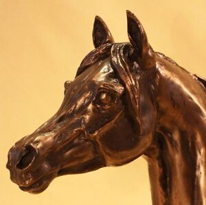 Arab Head - Bronze  - Harriet Glen