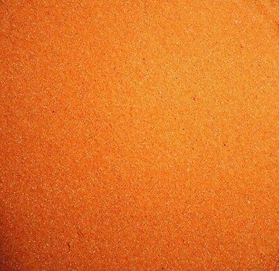 Artemia Eier entkapselt (dekapsuliert), ohne erbrüten( Artemia Cysten) 100 ml.