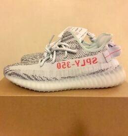 Adidas Yeezy Boost 350 v2 Blue Tint in a UK 7.5.