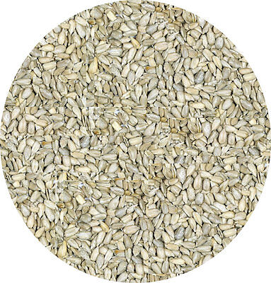 Sunflower Kernals 5kg Sunflower Hearts  Garden Wild Bird Seed Seeds Food Feed