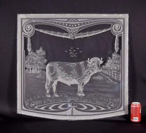 Antique French Etched Glass Window or Panel with a Cow/Bull