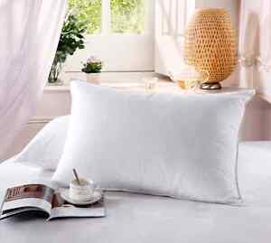 Set of 2 QUEEN Size GOOSE DOWN PILLOW White 1200TC 100% Egyptian Cotton Cover