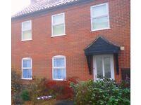 1 Bedroom ground floor flat £500 pcm