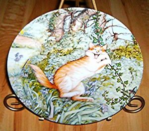 ZOES-CATS-Zoe-Stokes-TARZAN-Cat-Kitten-American-Artists-Plate