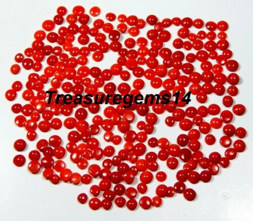 50CT WHOLESALE LOT 100% NATURAL ITALIAN RED CORAL CALIBRATED ROUND CABOCHON GEMS