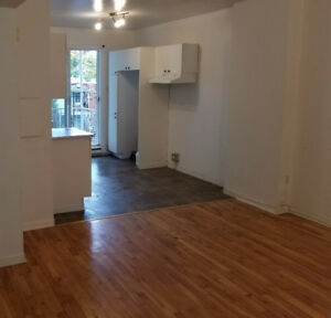 Grand 3 1/2,  Hochelaga-Maisonneuve disponible maintenant
