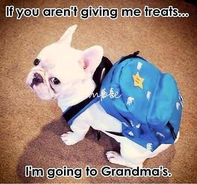 FRENCH BULLDOG Funny Going to Grandma's House Refrigerator Magnet 3.75 x 3.5