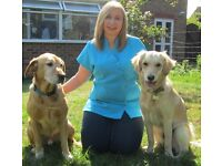 Pooches Paws - Dog walking, Grooming & Sitting/Pet visits