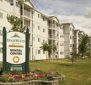 $500 OFF first month rent.  2 bedroom, pet friendly. Edmonton Edmonton Area image 1