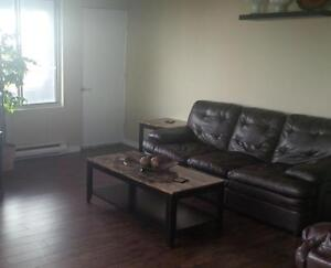Kenwick Place - 1 Bedroom Deluxe Apartment for Rent Sarnia Sarnia Area image 7