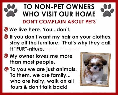 SHIH TZU House Rules for Non Pet Owners Funny Fridge Magnet Design 2