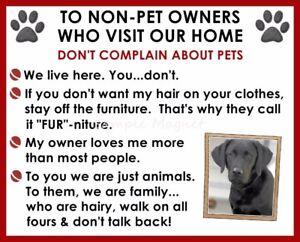 BLACK LABRADOR RETRIEVER House Rules for Non Pet Owners Funny Fridge Magnet