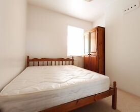 Rooms to rent in pet-friendly houseshare with terrace - West Green