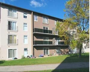 Spacious and Modern Upscale Suites! All Inclusive! Kitchener / Waterloo Kitchener Area image 2