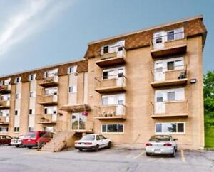 11 Glenview - 1 Bedroom Apartment for Rent